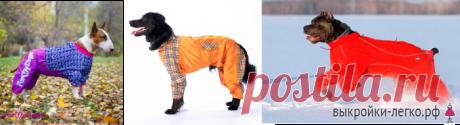 Базовая выкройка для собак | Готовые выкройки и уроки по построению на Выкройки-Легко.рф