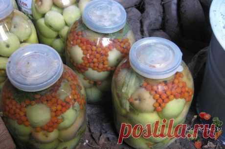 Моченые яблоки – вкусный десерт  Как приготовить моченые яблоки, чтобы были вкусными? Читайте простой и легкий рецепт здесь… Главное, не испортите