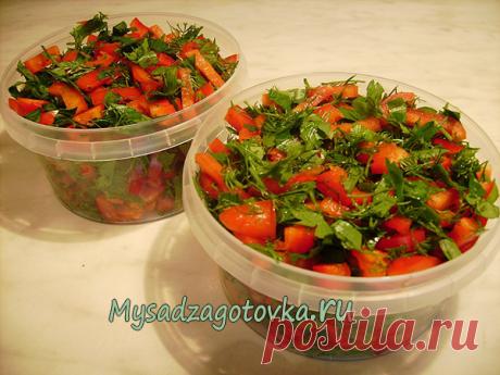 Заготовка из красного перца для первых блюд - Мой сад 🌿
