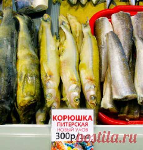 Неправильные названия рыб на нашем рынке maxnicol. 2033 - 02 - 18 16:31:00. Будучи ихтиологом по образованию с соответствующей записью в дипломе, проработавшим во ВНИРО 10 лет по специальности и участвовавшим в 5-ти океанических научных экспедициях по полгода каждая, большинство рыб на наших прилавках узнаю не то чтобы в лицо – т.к. многие продаются без головы – но уверенно определяю до вида по плавникам, кожным покровам, характеру чешуи, рисунку боковой линии и других характерным признакам...