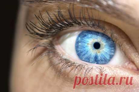 Ласковый «убийца» зрения. Как возникает глаукома и есть ли от неё спасение   Здоровая жизнь   Здоровье   Аргументы и Факты