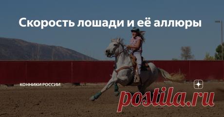 Скорость лошади и её аллюры Отличие аллюра от скорости, искусственные аллюры и скоростные рекорды.