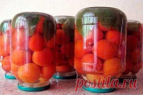 Очень вкусные консервированные помидоры с малиновыми листьями — Вкусно!