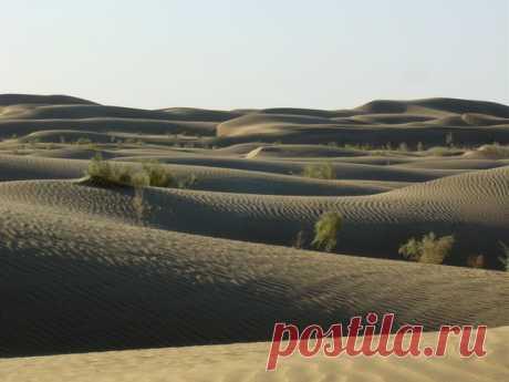 Самые большие пустыни. | Интересные Факты