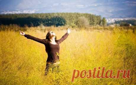 Исполнение желаний по методу Вадима Зеланда | Happy&Success | Яндекс Дзен