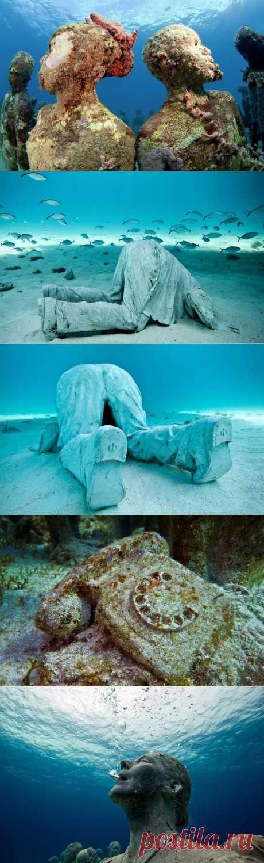 Таинственные подводные миры.