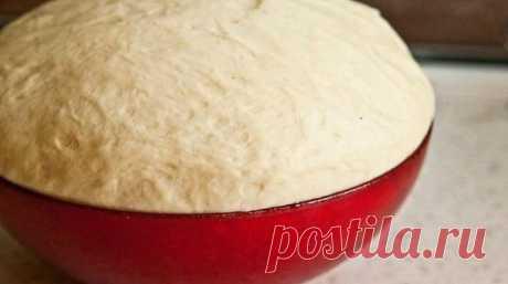 Дрожжевое тесто, пирожки из которого получаются Как ПУХ. Просто ЧУДО Рецепт