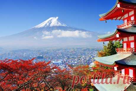 Интересные факты о Японии…   PulsON — все самые интересные события в мире.