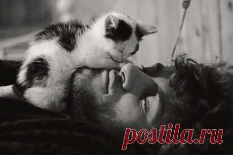 Нежность: 15 фотографий котов и их хозяев, которые испытывают друг к другу тёплые чувства