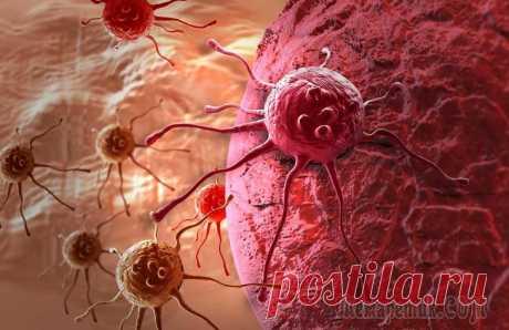 Giperlipidemiya: symptoms and treatment
