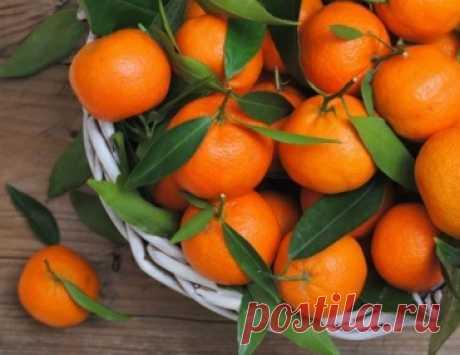 Неожиданные факты о мандаринах: об этом знают единицы