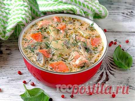Сырный суп с форелью и грибами | Кулинарные рецепты с фото на Рецептыши.ру