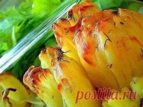 Картофель «Дофине»: оригинальный рецепт
