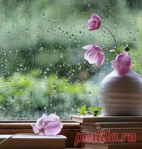 Весной дождь пахнет надеждой. Под ним хочется жить, любить, надеяться... Считать капли, сбиваясь со счета, ловить их языком, запоминая вкус свежести новой поры. Весенний дождь похож на мятный коктейль с кубиками льда. Коктейль из весны, так напоминающий лето...  = Эльчин Сафарли =