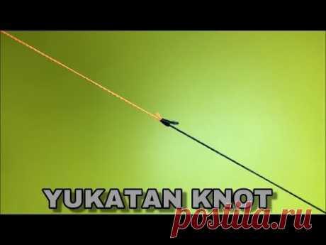 В этом видео вы узнаете, как соединить две лески разними способами или как связать две лески разного диаметра , а также Вы узнаете как связать плетёную леску и монолеску. Моими методами Вы научитесь делать узлы для рыбалки и узлы для бэкинга, будете обладать навыками как связать две лески.