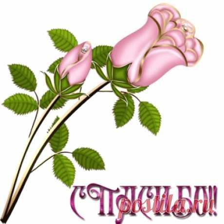 Декорирование стены: делаем бабочек из тонкой потолочной плитки - Интересные идеи для вдохновения