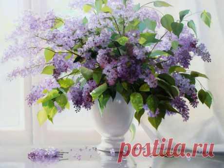 Цветы — роскошный дар природы... Художник Валерий Артамонов