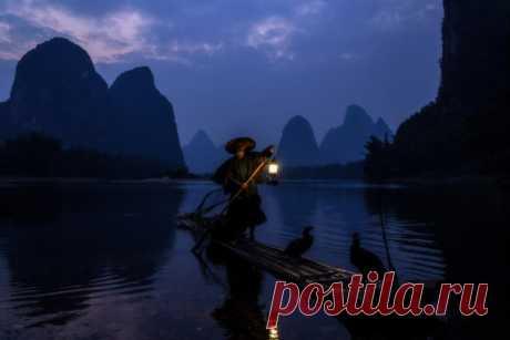 Китайский рыбак. Автор фото – Alovaddin K: nat-geo.ru/photo/user/45822/