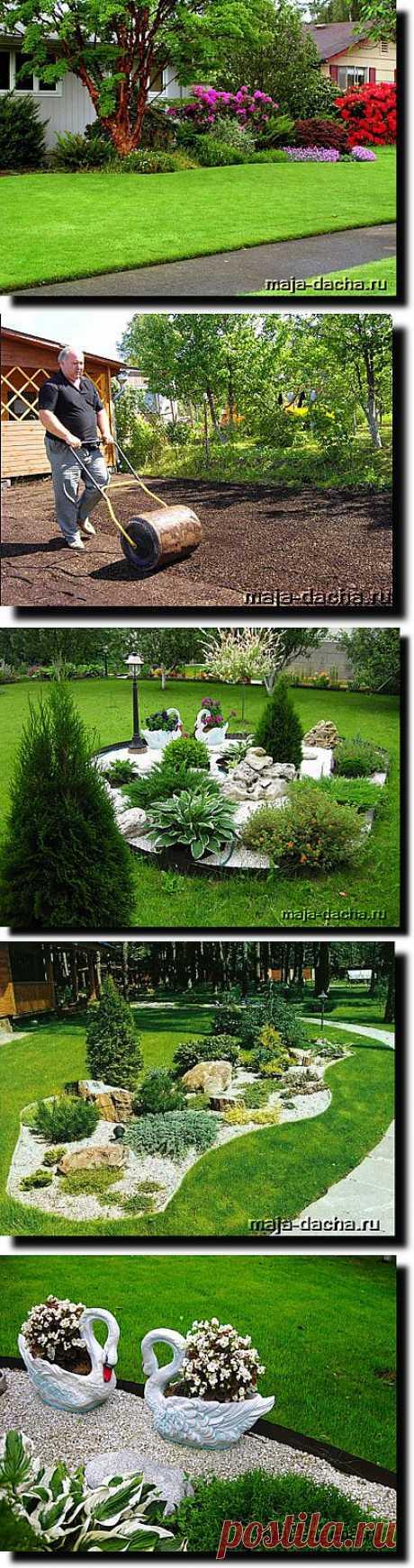 » Как сделать газон на даче, советы по уходу