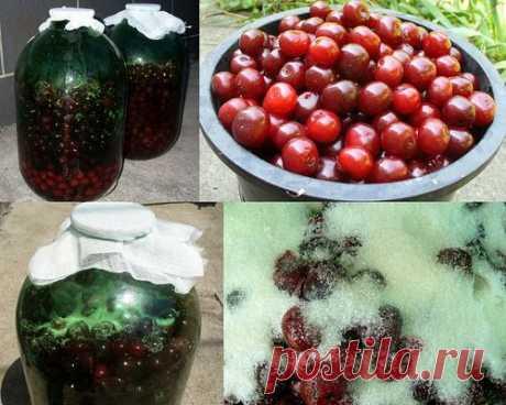 >Hаливкa из вишни.