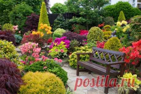 8 основных видов цветников. Какие бывают цветники? Фото — Ботаничка.ru
