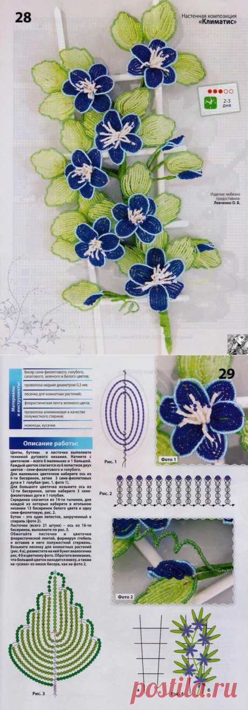 Клематис из бисера схема плетения. Цветы из бисера клематис | Лаборатория домашнего хозяйства