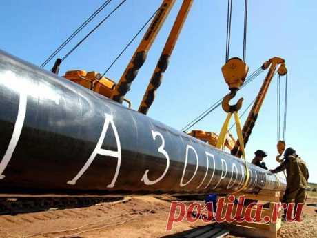 Германия не верит в надежность ГТС Украины | Новости мировой газовой отрасли | Яндекс Дзен