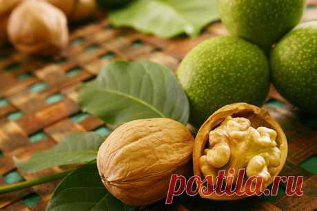 Medicinal properties of a walnut