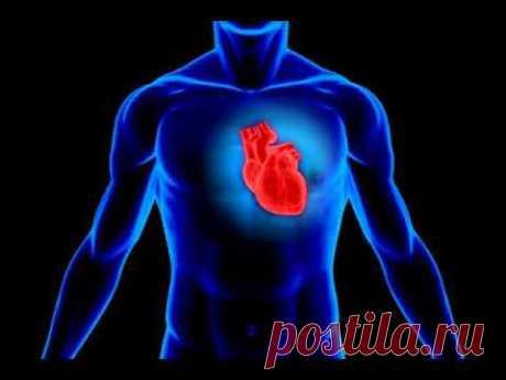Программа для нормализации работы сердца и СС системы - YouTube