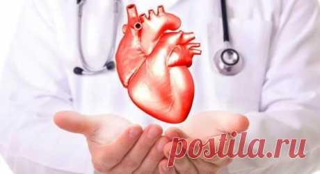 9 полезных свойств имбиря для нашего здоровья - Образованная Сова