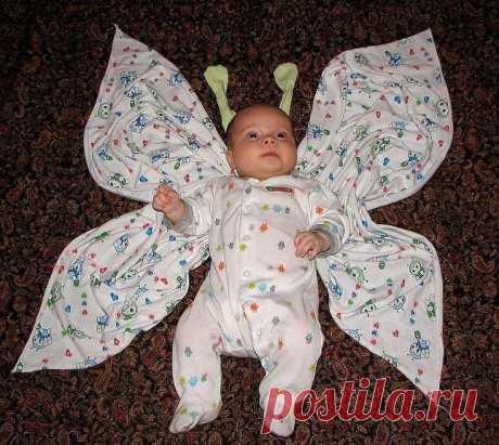 Классная Бабочка