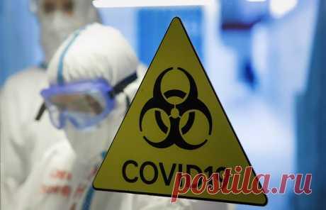 17.11.20-В России COVID-19 диагностирован еще у 22 410 человек