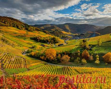 Картинки германия, осень, виноградник, облака, холмы, природа - обои 1280x1024, картинка №434413
