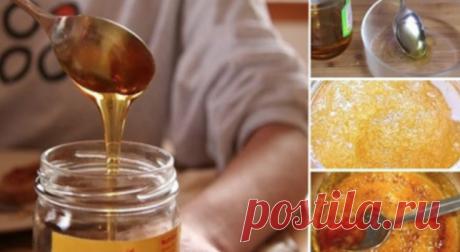 Как распознать поддельный мед (он везде), просто используйте этот простой трюк — Копилочка полезных советов