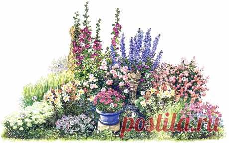 Клумба непрерывного цветения | Любимые цветы