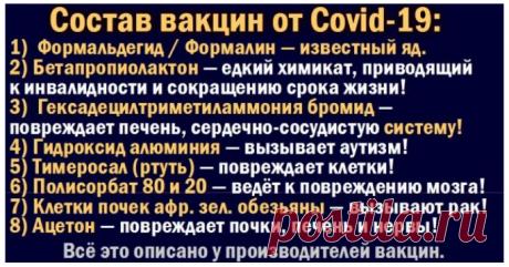 Шокирующее содержание вакцин! - Валерий Сироткин — КОНТ