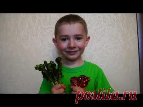 КОНФЕТЫ ЛЕДЕНЦЫ на палочке для ТОРТА рецепт ФОРМЫ из фольги для конфет в домашних условиях