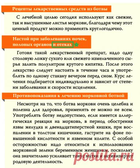 Настой морковной ботвы при заболеваниях почек, половых органов и отеках