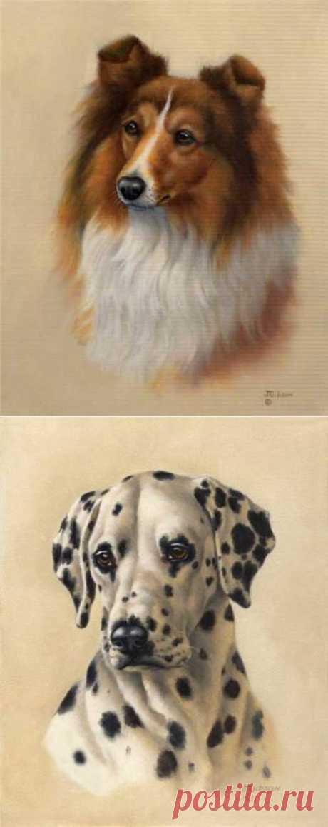 Judy Gibson Site, современная американская художница. Собаки - Галерея искусств - Для души - Статьи - Школа радости