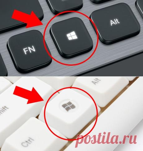 Так вот что делает эта кнопка на клавиатуре! Знать бы раньше… – В РИТМІ ЖИТТЯ