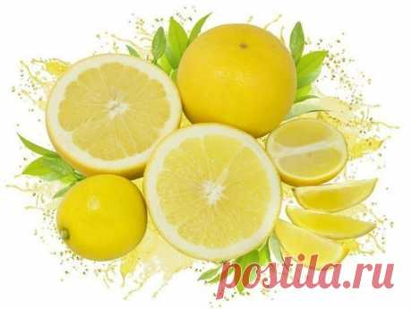 YOUR HEART AND LEMON\u000a\u000aUseful recipes for heart and vessels.\u000a\u000a1. To process and fill in 100 grams of the peeled garlic with juice from 6 lemons. To mix everything and to put in bank, to close a gauze. To store in the cool place. To accept according to 1 h to a spoon, washing down with warm water (it is desirable tala).\u000a\u000a2. 8 lemons, 400 g of garlic, 4 kg of a celery (leaves and roots), 400 g of horse-radish to miss via the meat grinder, to put in bank, to close a gauze, to sustain 12 h in heat (30 °C), to place in the refrigerator for 3 days...