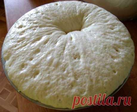 Наконец-то нашла тесто моей мечты - дрожжевое тесто за 15 минут! - Женские истории Наконец-то нашла тесто моей мечты — дрожжевое тесто за 15 минут! Больше никаких мучений! Храниться такое тесто в холодильнике пару суток и не перекисает, можно замораживать. Готовьте из этого теста что угодно — пирожки, беляши, булочки, лепешки, пироги с разными начинками, пиццу. Ингредиенты: Мука — 5 стак. Молоко — 500 мл Дрожжи (сухие — маленький […]