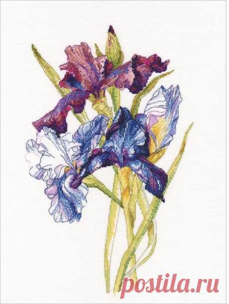 RTO Irises Rainbow - Cross Stitch Kit M580 - 123Stitch.com
