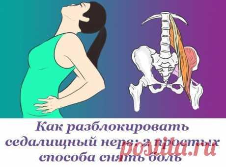 Как разблокировать седалищный нерв: 2 простых способа снять боль.  Седалищный нерв свое начало берет в поясничном отделе позвоночника и, проходя через ягодицы, тянется к ступне. Поэтому боль при его защемлении чувствуется особенно сильно.  Как правило, термин «защемление/ущемление седалищного нерва» подразумевает потерю эластичности и гибкости мышц задней поверхности ноги. Это часто связано с процессом возрастного укорочения (ригидности) мышц, который может начаться уже по...