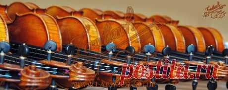 Скрипичная Мастерская Лаубах