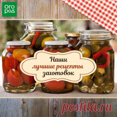 Проверенные рецепты заготовок из помидоров