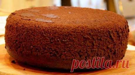 Вкуснейший десерт: классический шоколадный бисквит Он очень нежный, пышный, мягкий — каждый кусочек просто тает во рту