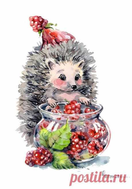 Иллюстрации от Анны Петуновой