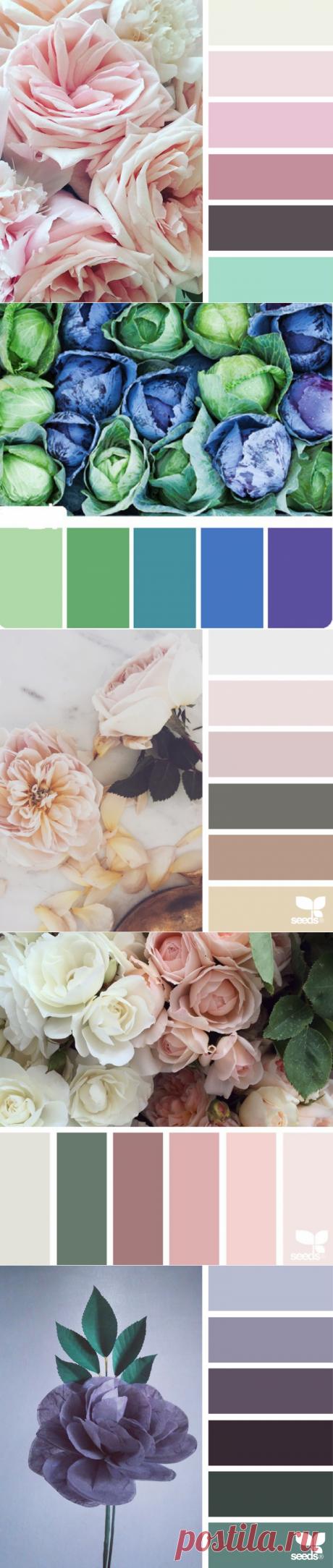 Красивые и нежные сочетания цветов