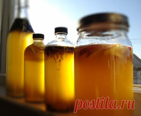 Вкусно и полезно! Удивительные преимущества чайного гриба!!! Смотри! Этот органический напиток может помочь Вашему здоровью:  1.Улучшить функции суставов. Гриб может помочь предотвратить дегенерацию сустава и структуру хряща. Он может увеличить производство гиалуроновой кислоты.  2.Улучшают пищеварение и иммунитет. Гриб проходит по кишечнику, изгоняя паразитов и патогенов. Вы можете использовать его, чтобы избавиться от бактерий и вы можете улучшить ваше пищеварение. Разме...